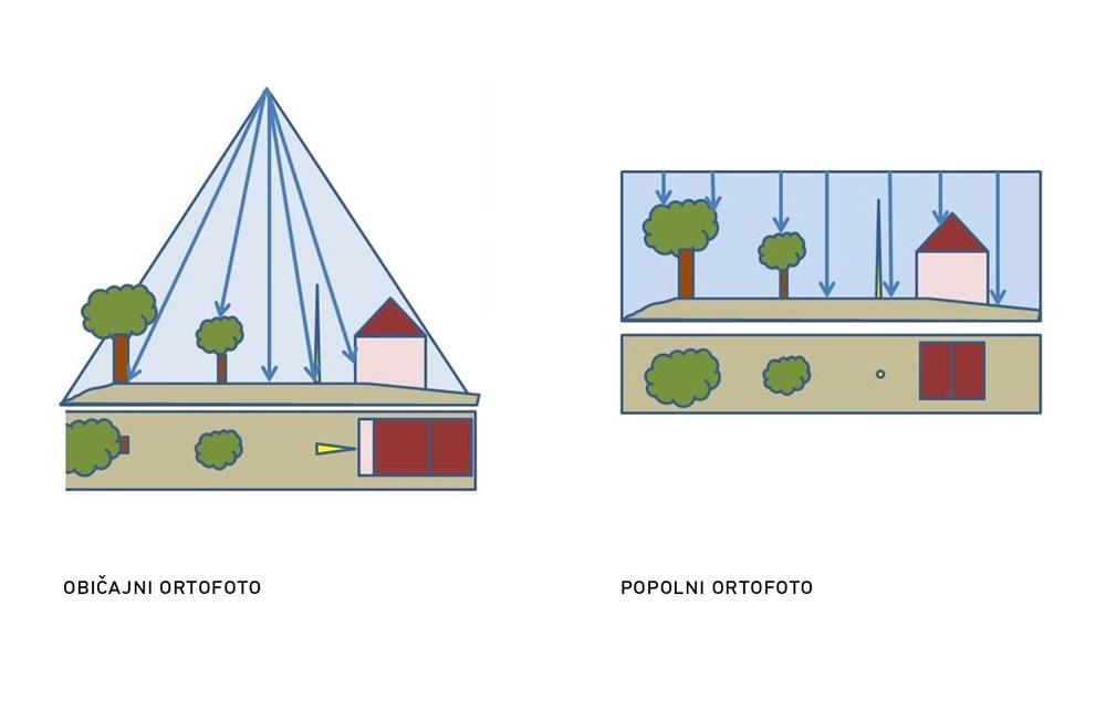 orto-foto2-1